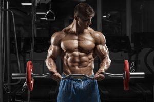 Revo Muscle prospect, functionea